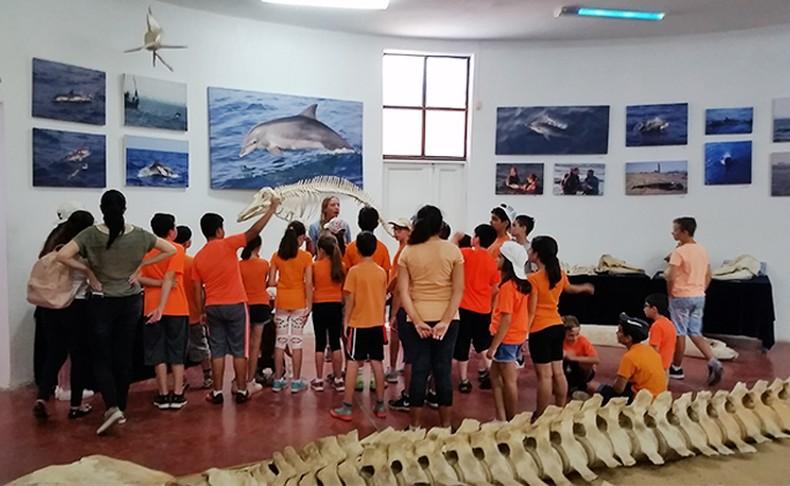 סיור במרכז הדולפין והים