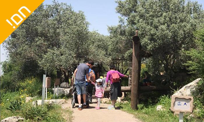 10 פארק נאות קדומים באזור מודיעין - כרטיס כניסה
