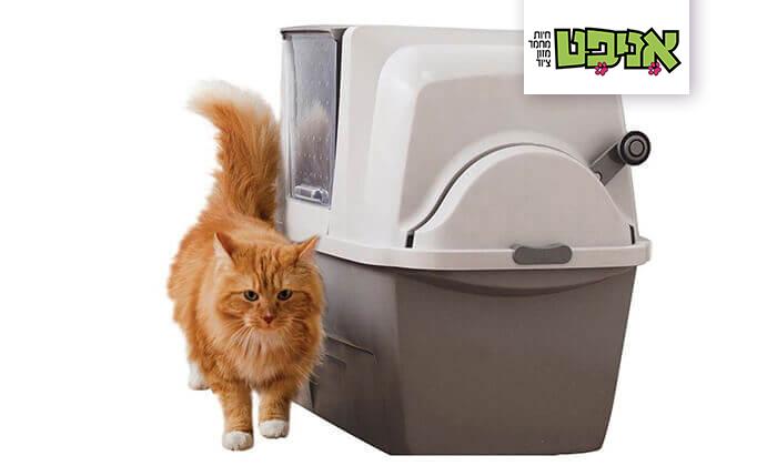 2 שירותים אוטומטים לחתול
