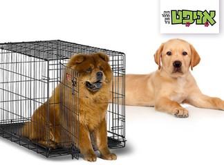 כלוב אילוף לכלב