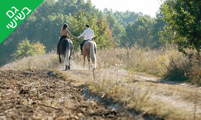 6 טיול רכיבה פרטי לזוג בחוות הסוסים תקוע