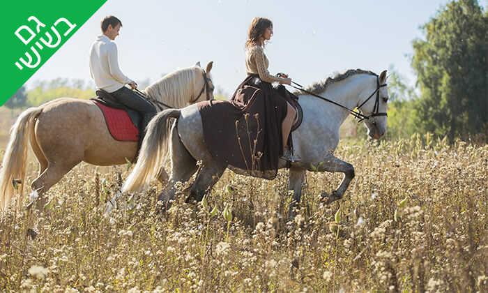 2 טיול רכיבה פרטי לזוג בחוות הסוסים תקוע