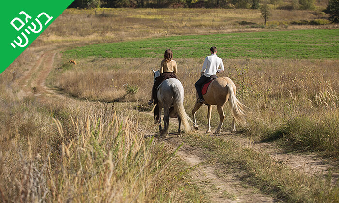 3 טיול רכיבה פרטי לזוג בחוות הסוסים תקוע