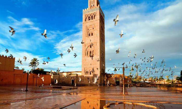 5 חופשה במרוקו - טיול מאורגן 8 ימים