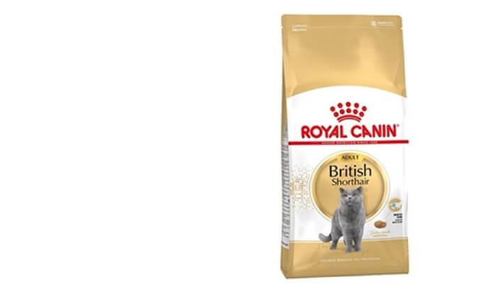 """7 שק מזון יבש 4 ק""""ג לחתולים Royal Canin"""