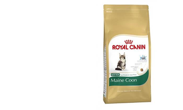"""11 שק מזון יבש 4 ק""""ג לחתולים Royal Canin"""