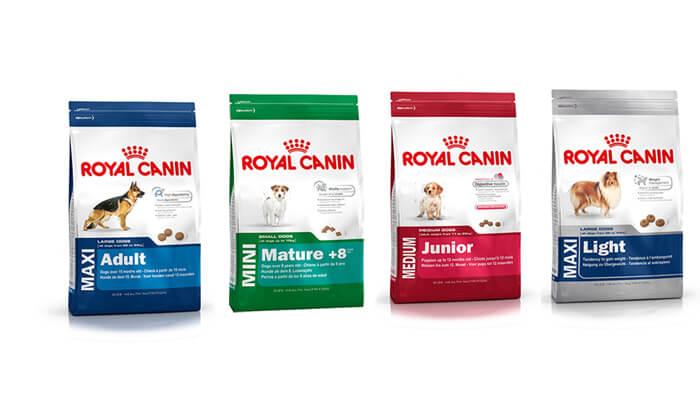 12 שק אוכל לכלב Royal Canin