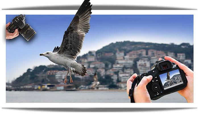 2 קורס צילום מקצועי בהדרכת אמן הצילום ז'ק דנטס