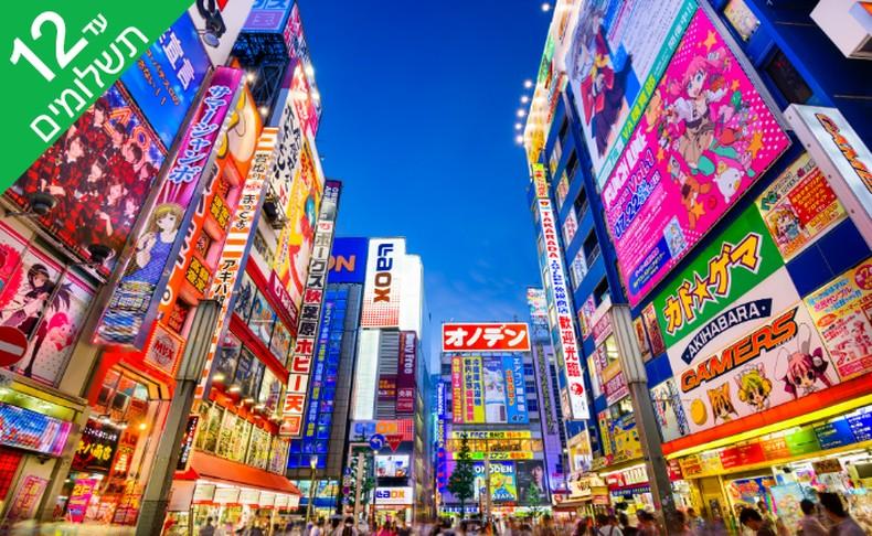 טיול 9 ימים ליפן