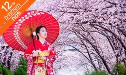 מאורגן 11 ימים ביפן, כולל פסח