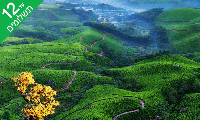 9 מראות וטעמים בדרום הודו - טיול מאורגן 9 ימים