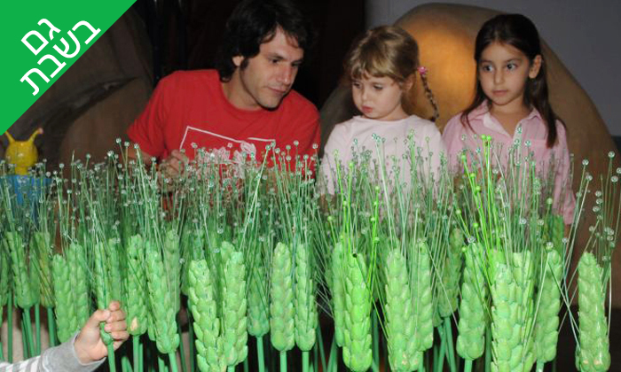 5 מוזיאון הילדים הישראלי חולון - פעילויות לכל המשפחה