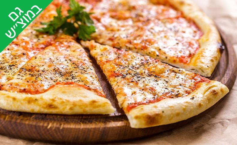 מגש פיצה משפחתית L מפיצה בר