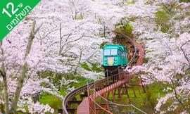 טיול מאורגן 9 ימים ביפן