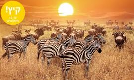 טיול קיץ למשפחות בדרום אפריקה