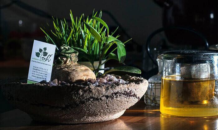 3 עיסוי ב'טיליה' - רשת קליניקות טיפוליות, תל אביב ורמת גן