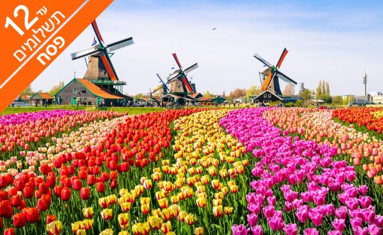 פסח בכפר נופש בהולנד, כולל רכב