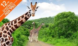 טיול בדרום אפריקה כולל ספארי