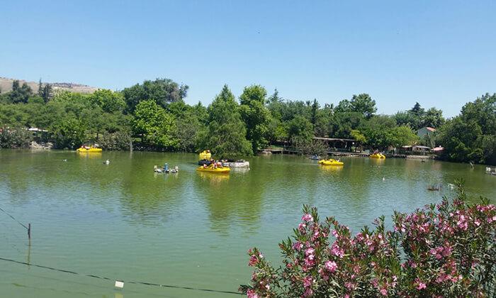 2 אגם חי יראון - אטרקציה לכל המשפחה