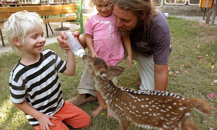 3 גן וחיות דגניה, בקיבוץ דגניה
