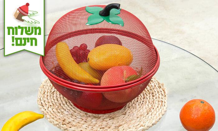 2 סלסלת פירות - משלוח חינם