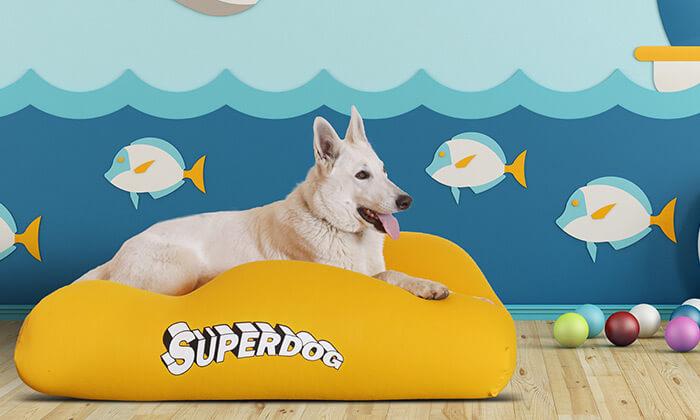 2 מיטה לכלביםSUPERDOG