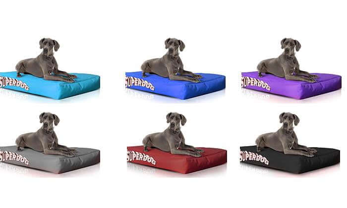 16 מיטה לכלביםSUPERDOG