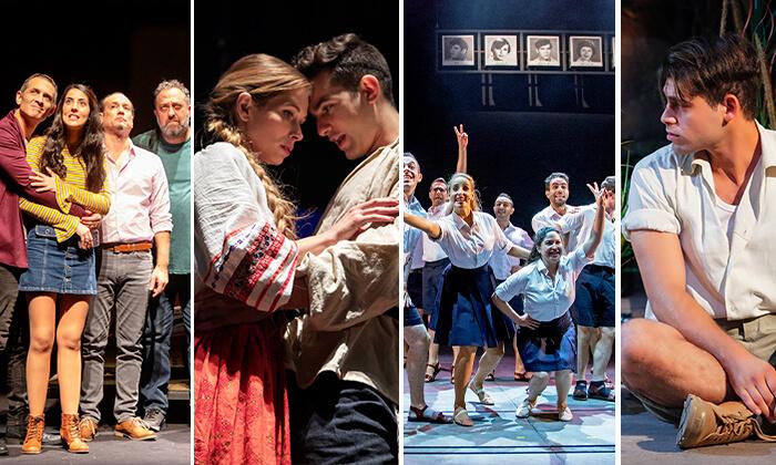 6 מנוי לתיאטרון הלאומי הבימה