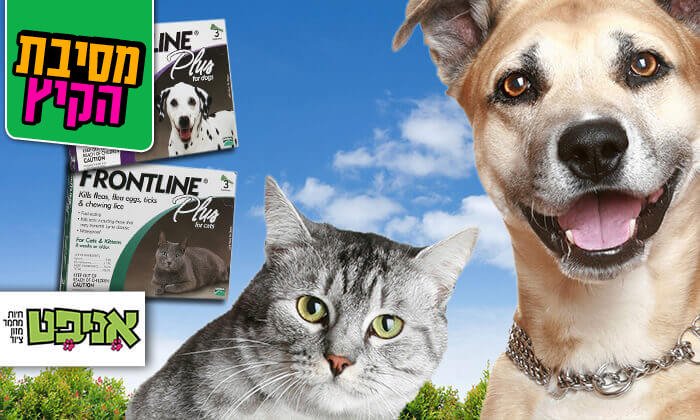 2 אמפולות פרונטליין פלוס לחתולים או לכלבים - משלוח חינם!
