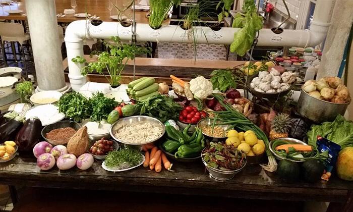 6 סדנת אוכל טבעוני בחוויה הטבעונית, יפו