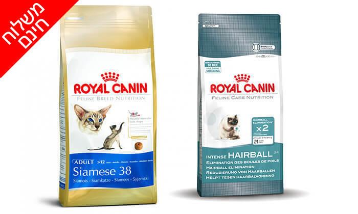 3 שק מזון יבש רויאל קנין לחתול - משלוח חינם!