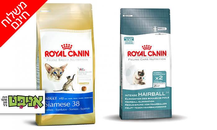 2 שק מזון יבש רויאל קנין לחתול - משלוח חינם!