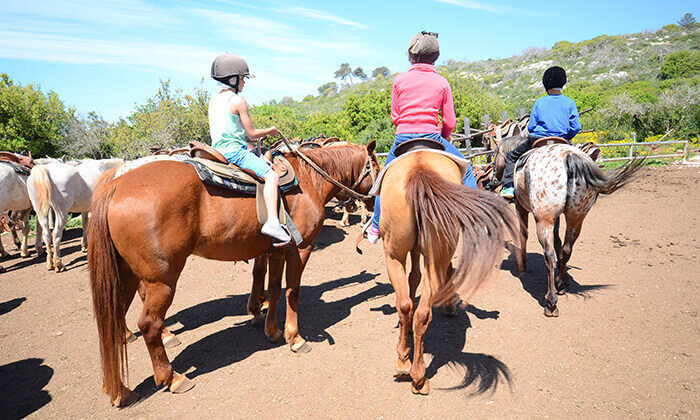 7 יום כיף למשפחות בחוויית הרוכבים, בית אורן